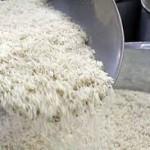 کارشناسان میگویند: امسال قیمت برنج افزایش مییابد