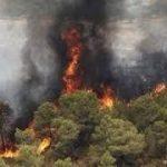در دو روز ۳۵ هکتار از جنگلهای گیلان «آتش» گرفت